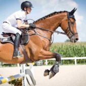 When the Going Gets Hard – Managing Horses Legs
